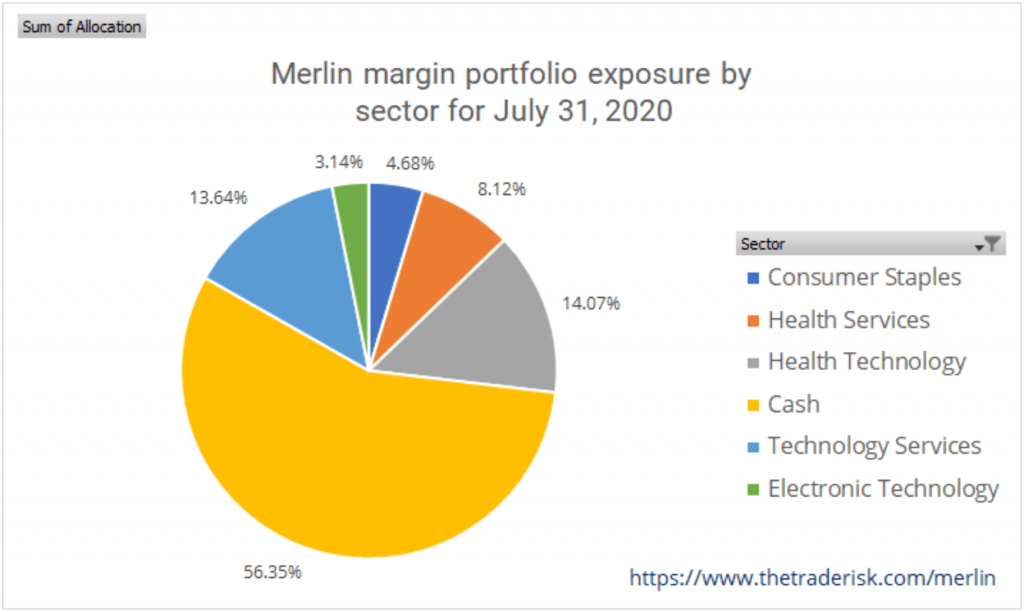 Merlin Strategy Performance July 2020 - Image of strategy allocation